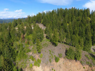 Sandpoint Residential Lots & Land For Sale: 346 N Star