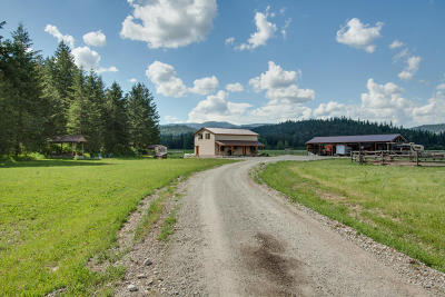 Priest River Single Family Home For Sale: 65 Polonium Way