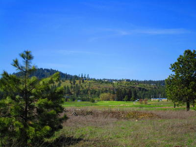Post Falls Residential Lots & Land For Sale: NKA W Hayden Ave