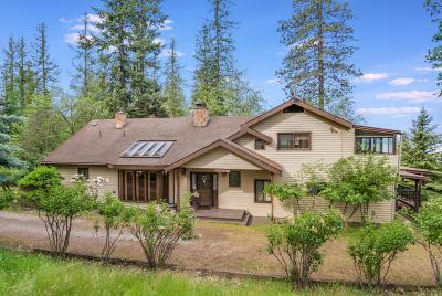 Sandpoint Single Family Home For Sale: 460 Sunnyside Ridge Rd.