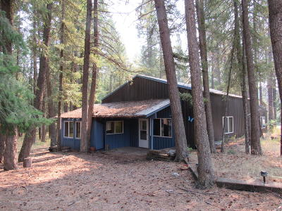 Priest Lake, Priest River Single Family Home For Sale: 4819 Vay Road