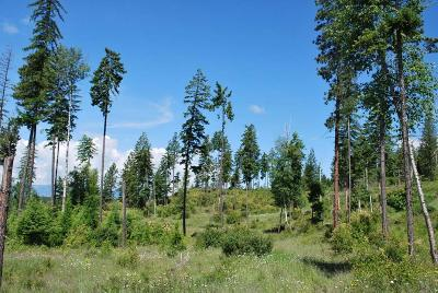 Bonners Ferry Residential Lots & Land For Sale: Lot 33 Wood Duck Ln