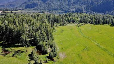 Clark Fork Residential Lots & Land For Sale: River Rd