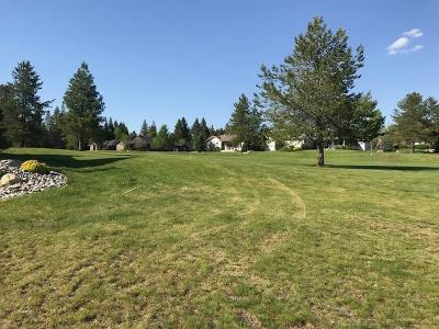 Blanchard Residential Lots & Land For Sale: BLK24, Lot4 Lake Sans Souci, Hanaford Rd