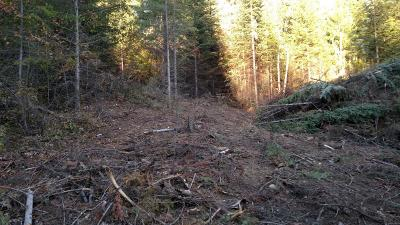 Sandpoint Residential Lots & Land For Sale: 228 Olympic Dr