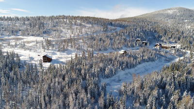 Sandpoint Residential Lots & Land For Sale: NKA Blizzard Road