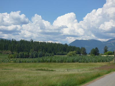 Bonners Ferry Residential Lots & Land For Sale: NNA Porthill Lp