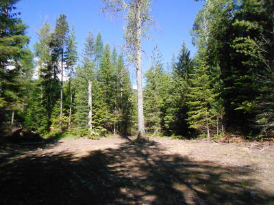 Sandpoint Residential Lots & Land For Sale: NNA A St.