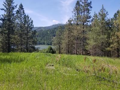 Priest River Residential Lots & Land For Sale: Lot 1,  NNA Keyser Ln