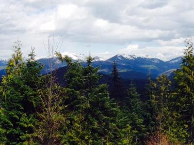 Priest Lake Residential Lots & Land For Sale: 922 &936 Cottonwood Creek
