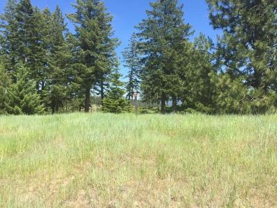 Coeur D'alene Residential Lots & Land For Sale: Lot 254 Gypsum Court