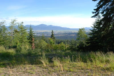 Coeur D'alene Residential Lots & Land For Sale: nna S Palomino Drive