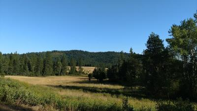 Coeur D'alene Residential Lots & Land For Sale: NNA Greensferry Rd