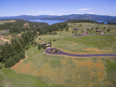 Coeur D'alene Residential Lots & Land For Sale: L236 S Citrine Dr