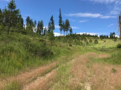 Coeur D'alene Residential Lots & Land For Sale: NKA Newell Rd