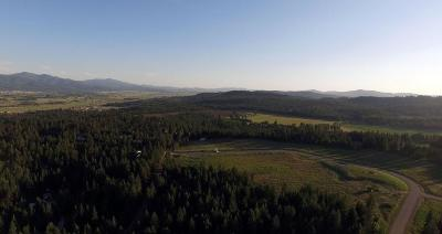 Rathdrum Residential Lots & Land For Sale: L2B5 Spiral Ridge Trl