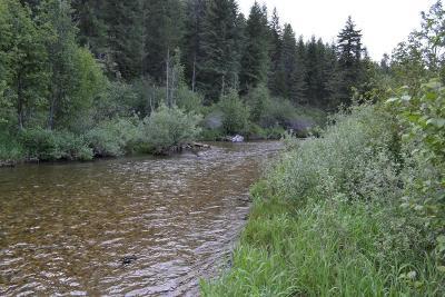 Priest River Residential Lots & Land For Sale: NKN Eastriver Loop