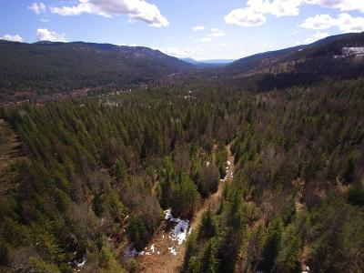 Sandpoint Residential Lots & Land For Sale: NKA Hell Roaring Rd