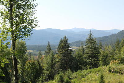 Sandpoint Residential Lots & Land For Sale: NKA Last Chance Rd