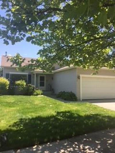 Post Falls Single Family Home For Sale: 1170 N Kaniksu