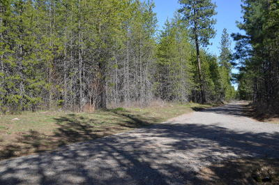 Blanchard Residential Lots & Land For Sale: NNA Wolf Lodge Trail