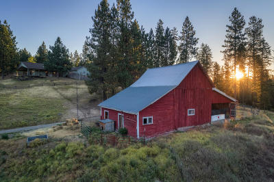 Coeur D'alene Single Family Home For Sale: 4570 S Stach Rd
