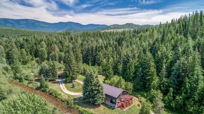 Sandpoint Single Family Home For Sale: 4854 Rapid Lightning Road