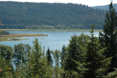 Sandpoint Residential Lots & Land For Sale: 304 Cresthaven
