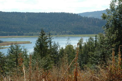 Sandpoint Residential Lots & Land For Sale: 584 Cresthaven