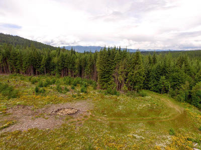 Sandpoint Residential Lots & Land For Sale: NNA Bobcat Ln