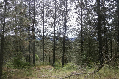 Rathdrum Residential Lots & Land For Sale: NNA N Church Rd Lot 3