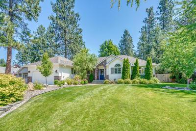 Post Falls Single Family Home For Sale: 703 S Riverside Harbor Dr