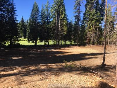 Priest Lake Residential Lots & Land For Sale: NNA Fairway Dr