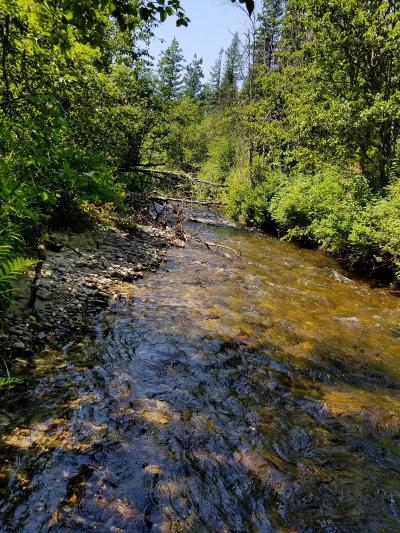 Priest River Residential Lots & Land For Sale: NKA Creekside Dr