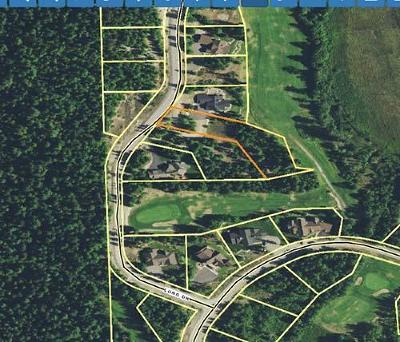 Priest Lake Residential Lots & Land For Sale: Long Dr Lot 6