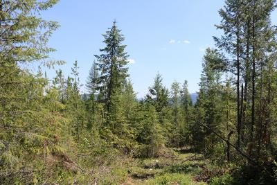 Sandpoint Residential Lots & Land For Sale: 2-11 Dream Haven Ln