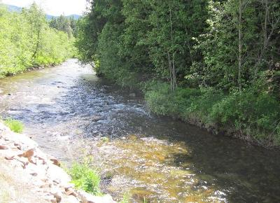 Sandpoint Residential Lots & Land For Sale: Bobcat Rd