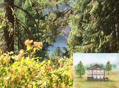 Coeur D'alene Single Family Home For Sale: Waterview