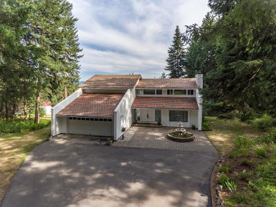 Rathdrum Single Family Home For Sale: 17116 N Reservoir Rd