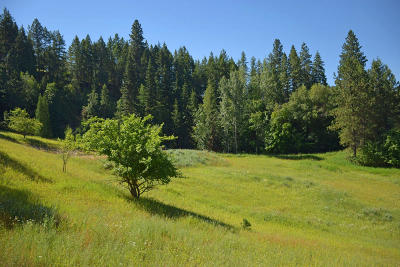 Bonners Ferry Residential Lots & Land For Sale: NNA Cemetery Rd