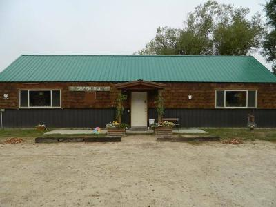 Priest Lake, Priest River Single Family Home For Sale: 4556 Peninsula Rd
