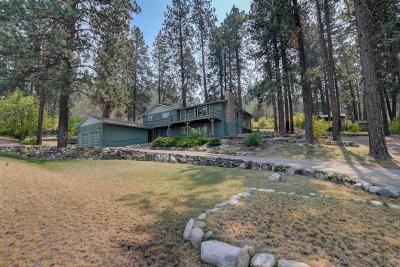 Post Falls Single Family Home For Sale: 4276 E Mullan Ave