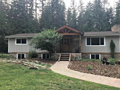 Priest Lake Single Family Home For Sale: 527 Creekside Dr