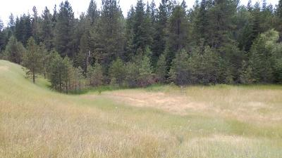 Coeur D'alene Residential Lots & Land For Sale: NNA Hwy 95