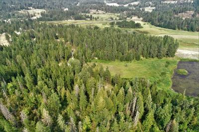 Sandpoint Residential Lots & Land For Sale: NKA Sunnyside Road (6.65 Acres)