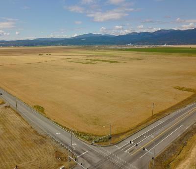 Rathdrum Residential Lots & Land For Sale: NW Corner Hayden Avenue & Hwy 41 South 1/2