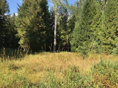Priest River Residential Lots & Land For Sale: 268 Nowhere Rd