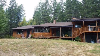 Sandpoint Single Family Home For Sale: 11647 Baldy Mtn Rd