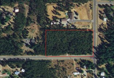Rathdrum Residential Lots & Land For Sale: 1737 W Scarcello Rd