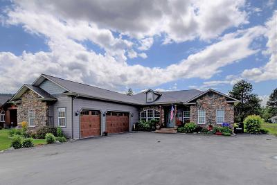 Blanchard Single Family Home For Sale: 428 Stoneridge Rd